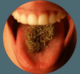 marihuana comida_transp